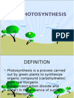 6.9 Photosynthesis