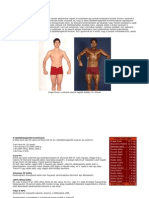 A Scitec Nutrition 2005 Teszt