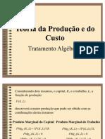 Capítulo 07 Custos da Produção(2) - Microeconomia PINDYCK E RUBINFELD