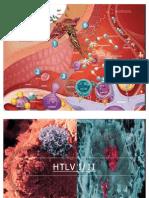 antigenos virales de importancia diagnostica en inmunologia