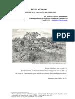 Artigo 282 - Bioma Do Cerrado