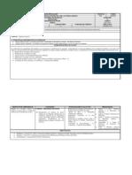 Programa Detallado Registros de Pozos[1]