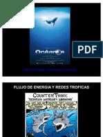 3.2 Flujo de Energia_ Problemas Aplicados