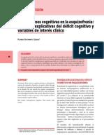 Funciones cognitivas en Esquizofrenia - Ricardo Bustamante
