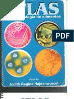 Hajdenwurcel (1998) - Atlas de Microbiologia de Alimentos