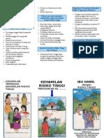Leaflet Ibu Hamil Risti
