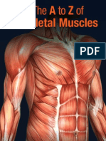 The A to Z of Skeletal Muscles