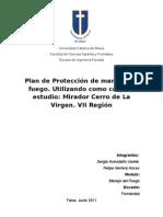 PLAN PROTECCION-  S. AVENDAÑO -  F. HERRERA