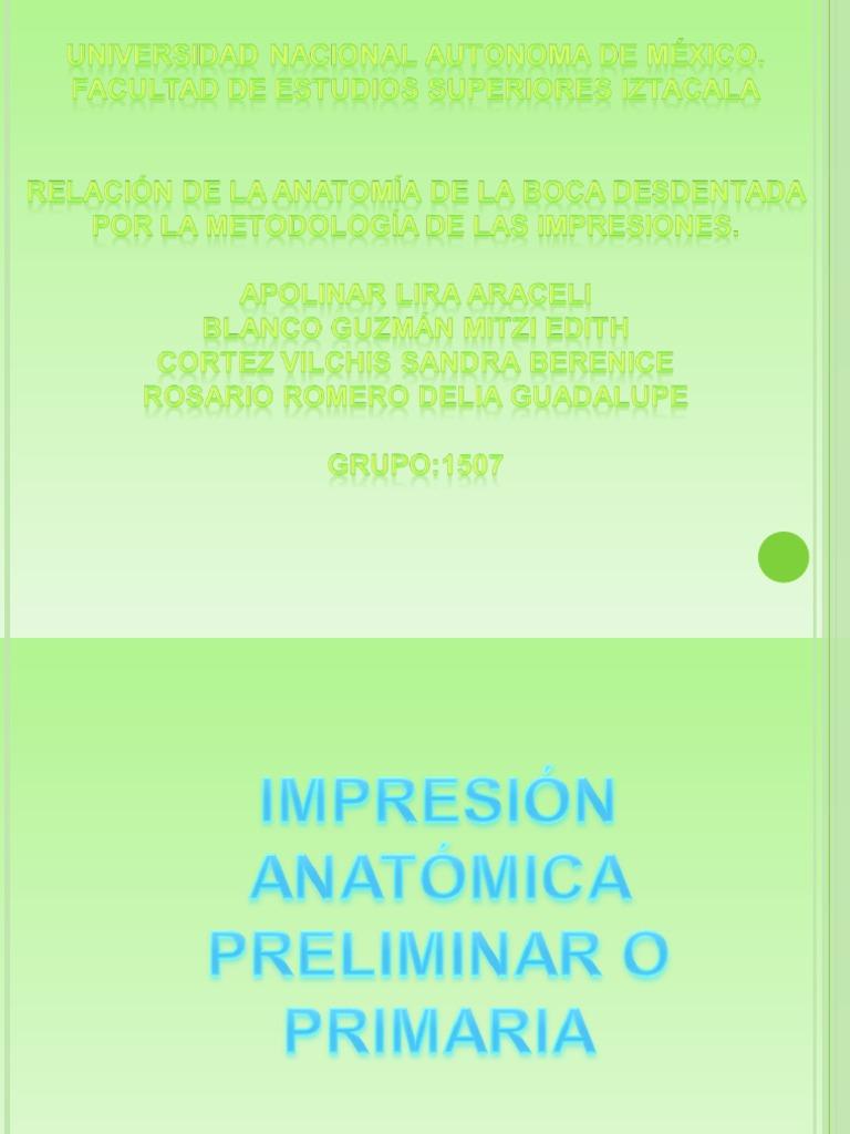 Impresiones cia Expo 3