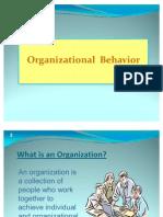 Ob and Its Major Deciplines