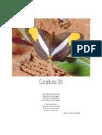 Agroecologia_-_uma_nova_ciência_para_apoiar_a_transição_a_agriculturas_mais_sustentáveis