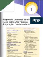 ED1-dano texto 2011-2
