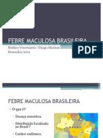 FEBRE MACULOSA BRASILEIRA Apresentação