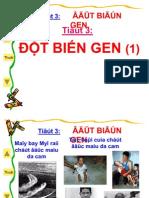 DBG(t1)