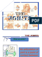 Lecture 3 - The Joints (3)