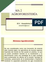TEMA 2 agrofores