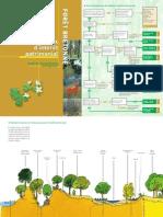 Les Milieux D'intérêt Patrimonial De La Forêt Bretonne