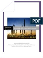 Overview of Petrochemical Industry