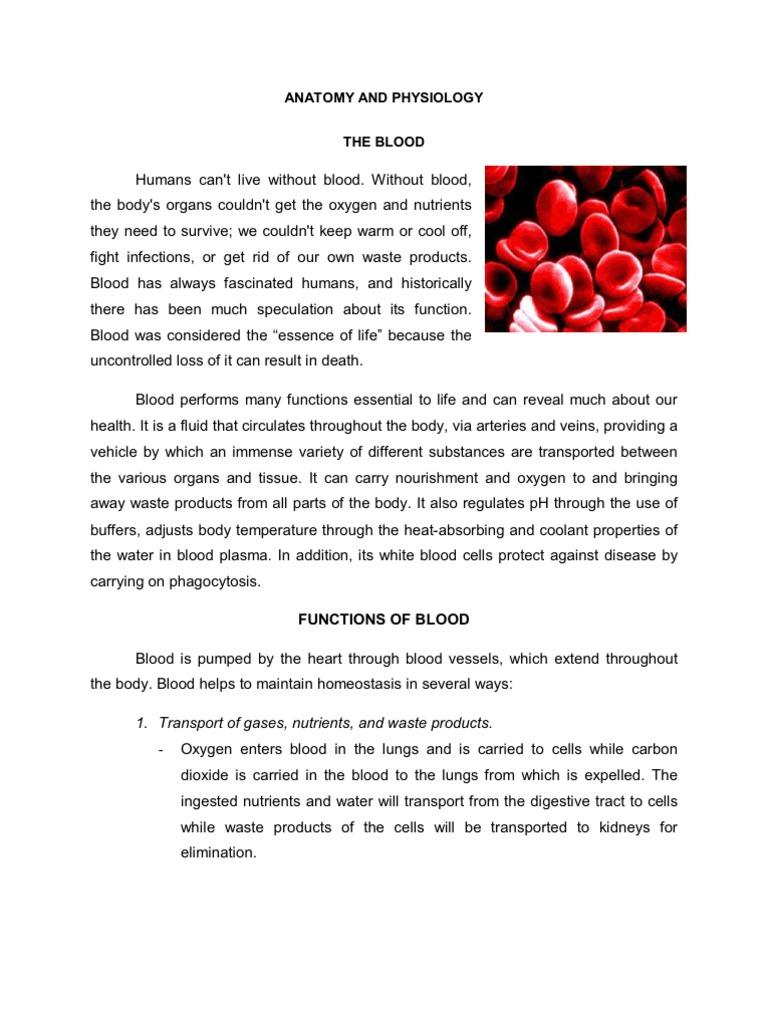 Acute myelogenous leukemia - Patho, Anatomy, and Diagnostic test ...