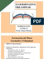 discotrilaminar-090628171105-phpapp02
