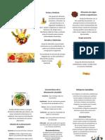 Alimentación Saludable (triptico)