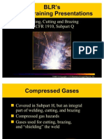 Welding Cutting Brazing Safety