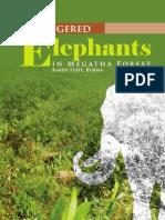 REPORT:Endangered Elephants in Megatha Forest Karen State Burma-engl.