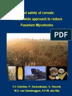 Mycotox Cereal Chain