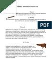 INSTRUMENTOS AUTOCTONOS FOLKLORICOS