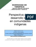 Desarrollo Local en Comunidades Indigenas