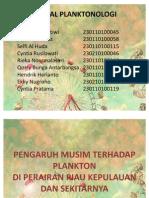 Ppt Plankton
