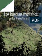 Bosques Montanos