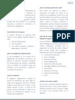 Proyecto Diagnóstico Organizacional