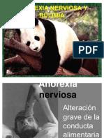 Anorexia Nerviosa y Bulimia.02 Ppt
