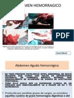 4. Abdomen Hemorragico