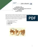 CasoClinico 16_290709