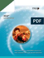 Meap Brochure