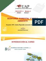 Ayuda 1-Introducciòn Auditoria Forestal y Medio Ambiente