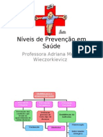Aula Níveis de Prevenção