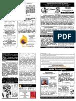 Faro 222 PDF