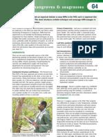 G4 Monitoring Mangroves & Sea Grasses