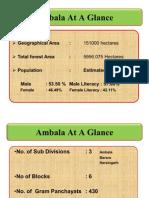 Ambala at a Glance