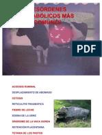 enfermmetablicas-110626105604-phpapp01