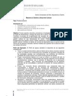 Maestria en Promocion y Desarrollo Cultural UDG
