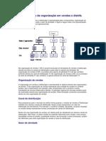 Estruturas de organização em vendas e distrib - Conceito