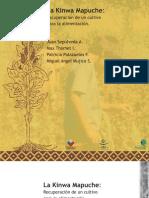 Libro Kinwa Mapuche Final