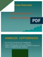Clasifi. de Los Animales Vertebra Dos