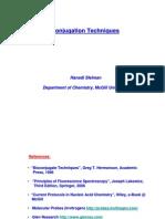BioconjugationTechniquesSleiman06
