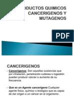 Productos Quimicos Cancerigenos