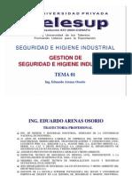Gestion de Seguridad e Higiene Industrial
